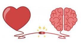 Qu'est-ce que l'intelligence émotionnelle ?